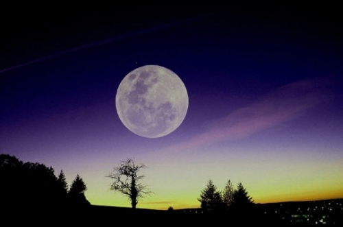 quand-la-nuit_2655393-L.jpg