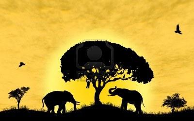 11566423-safari-en-afrique-silhouette-d-39-animaux-sauvages.jpg