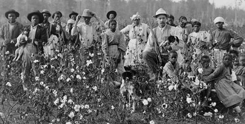 img_slavery_in_america_bandeau650_2.jpg
