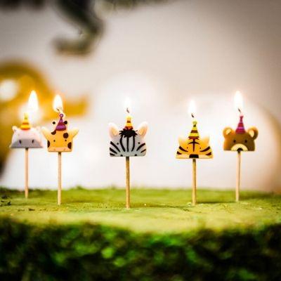 lot-de-5-bougies-d-anniversaire-animaux-jungle-fever-2.jpg