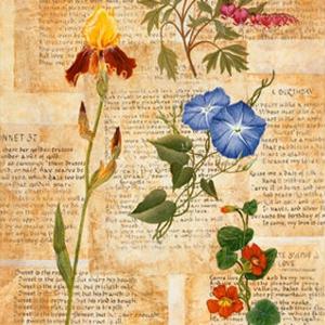 sonnets-1.jpg