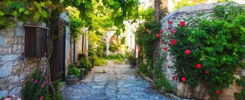 village_pierre_fleurs_typique_20171114103757.jpg