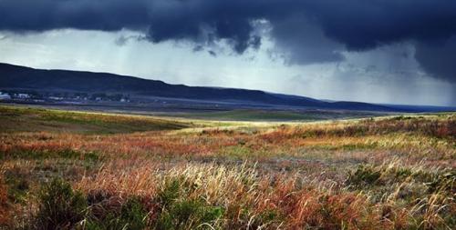 steppe320.jpg