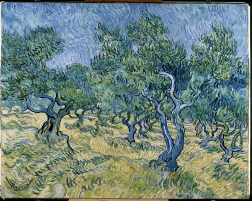 Van Gogh, Oliveraie.jpg