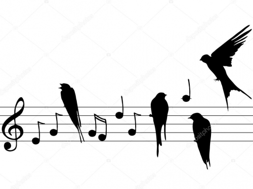 depositphotos_11227580-stock-photo-music-notes-and-birds-2.jpg