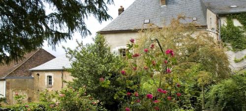 jardin de sido.jpg
