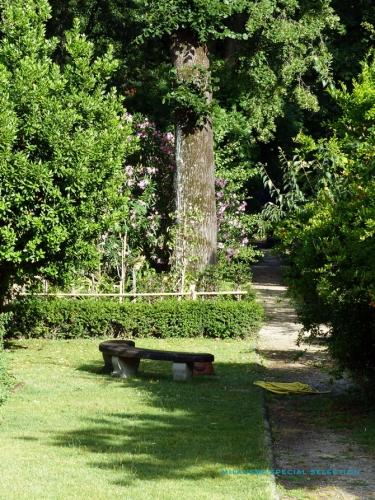 jardin-des-simples-de-florence-4.jpg