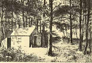 cabin_walden1.jpg