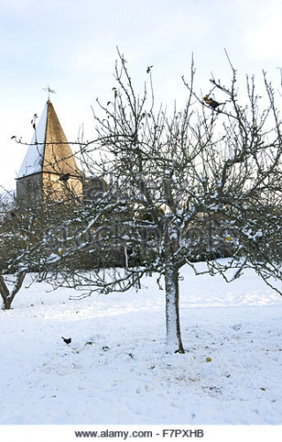 snow-in-the-garden-at-monks-house-east-sussex-monks-house-was-the-f7pxhb.jpg