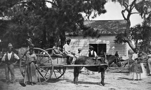 alamy stock photo South Carolina 1862.jpg