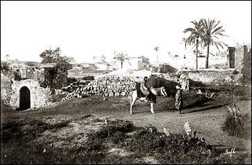 Palestine-Village-1945-1.jpg