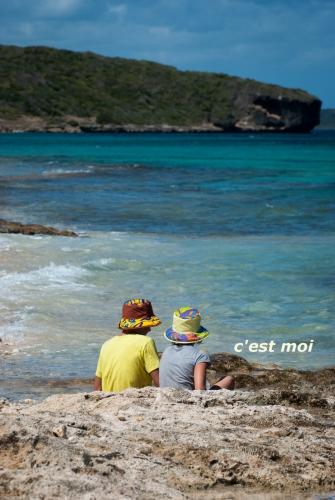 Guadeloupe2015_16.jpg