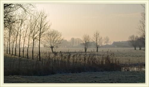 campagne flamande.jpg