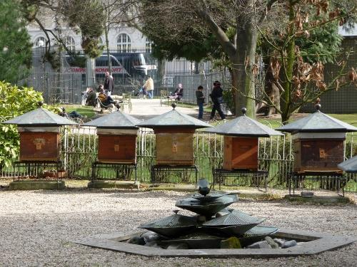 Ruchers-Luxembourg-Paris.jpg