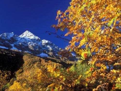 automne montagne.jpg