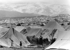 camps 1948.jpg
