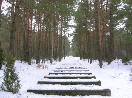 1280px-Treblinka_-_Rail_tracks.jpg