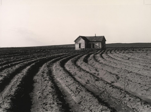 dorothea-lange-depression-inspiration-tractored-out-childress-county-texas.jpg