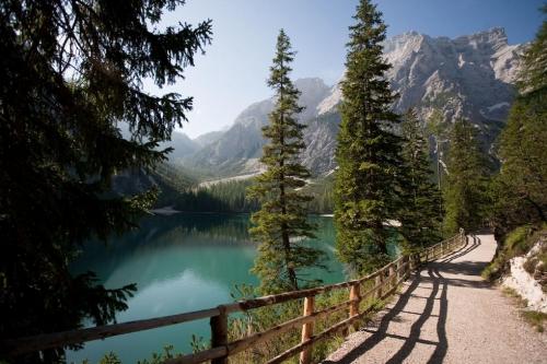 paysage du Haut Adige.jpg