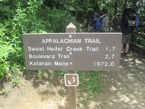 800px-Appalachian_Trail_at_Newfound_Gap_IMG_5137.jpg