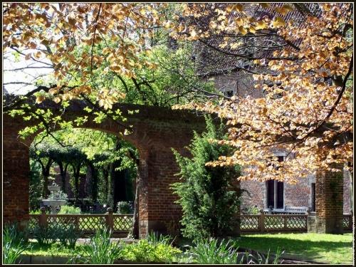 anderlecht-maison-d-erasme-jardin-08-4ah-cpf-147.jpg