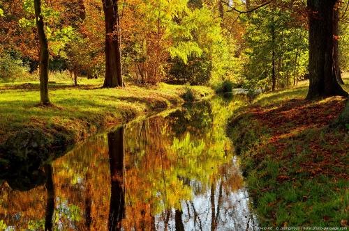 automne au bord de l'eau.jpg