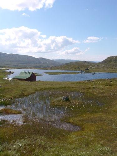 Hardangervidda.jpg